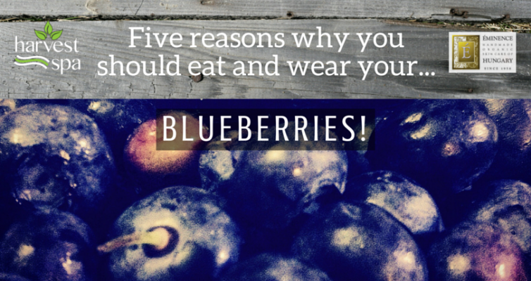 5 Reasons Why You Should Eat & Wear Your Blueberries!