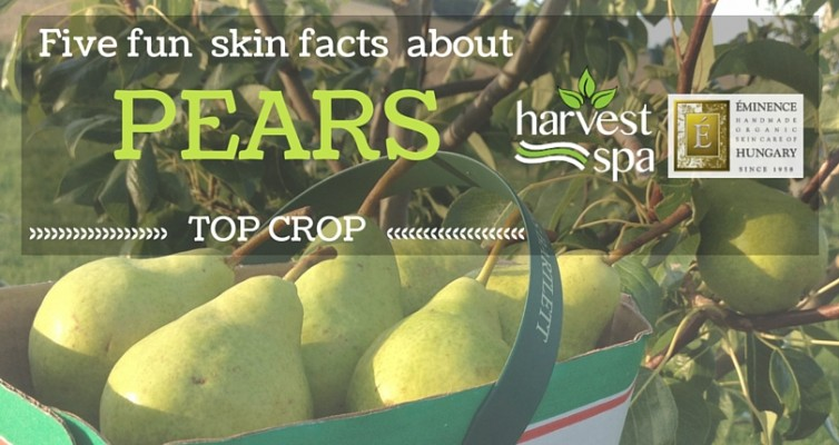 October Top Crop Pick – Pears!